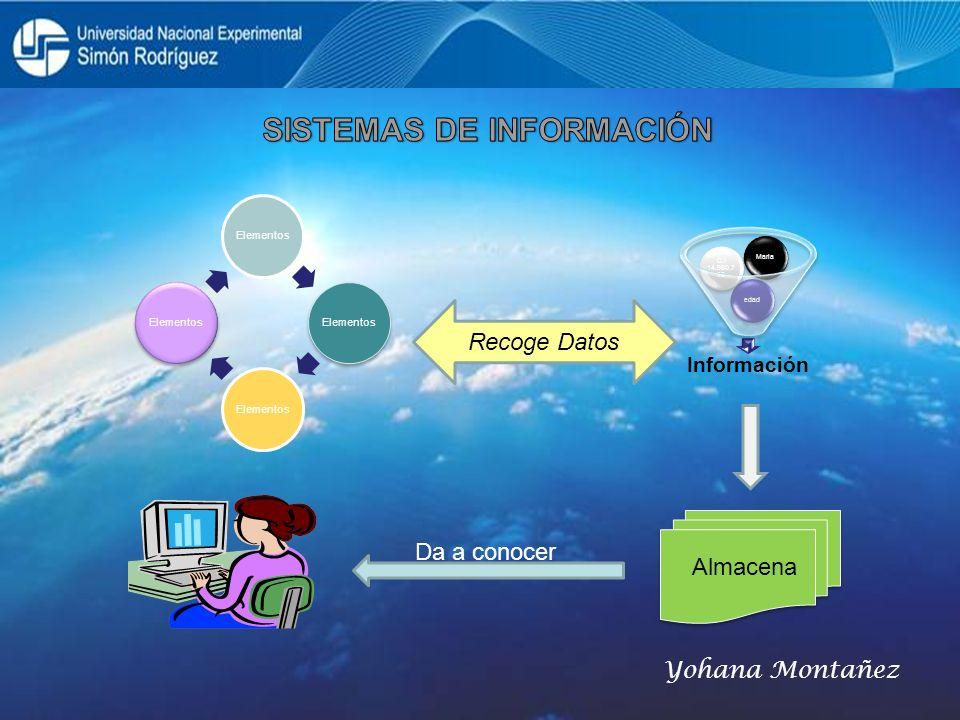 Elementos Recoge Datos Da a conocer Almacena Yohana Montañez