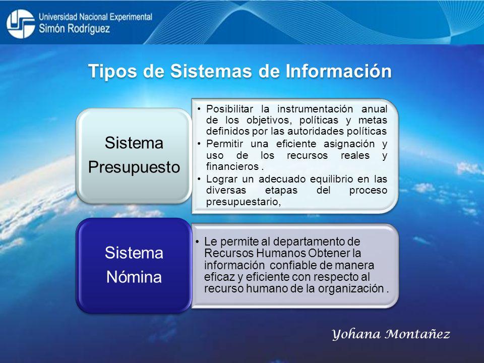 Tipos de Sistemas de Información Posibilitar la instrumentación anual de los objetivos, políticas y metas definidos por las autoridades políticas Perm