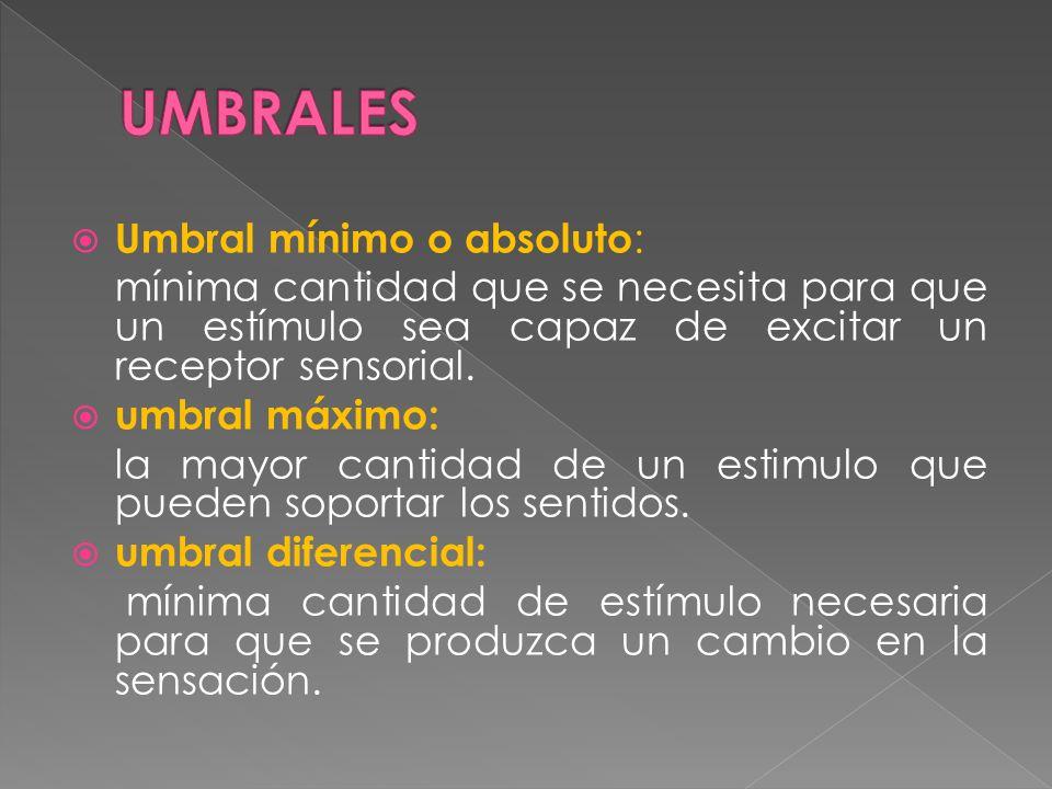 Umbral mínimo o absoluto : mínima cantidad que se necesita para que un estímulo sea capaz de excitar un receptor sensorial. umbral máximo: la mayor ca