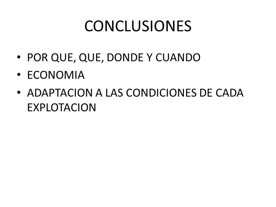 CONCLUSIONES POR QUE, QUE, DONDE Y CUANDO ECONOMIA ADAPTACION A LAS CONDICIONES DE CADA EXPLOTACION
