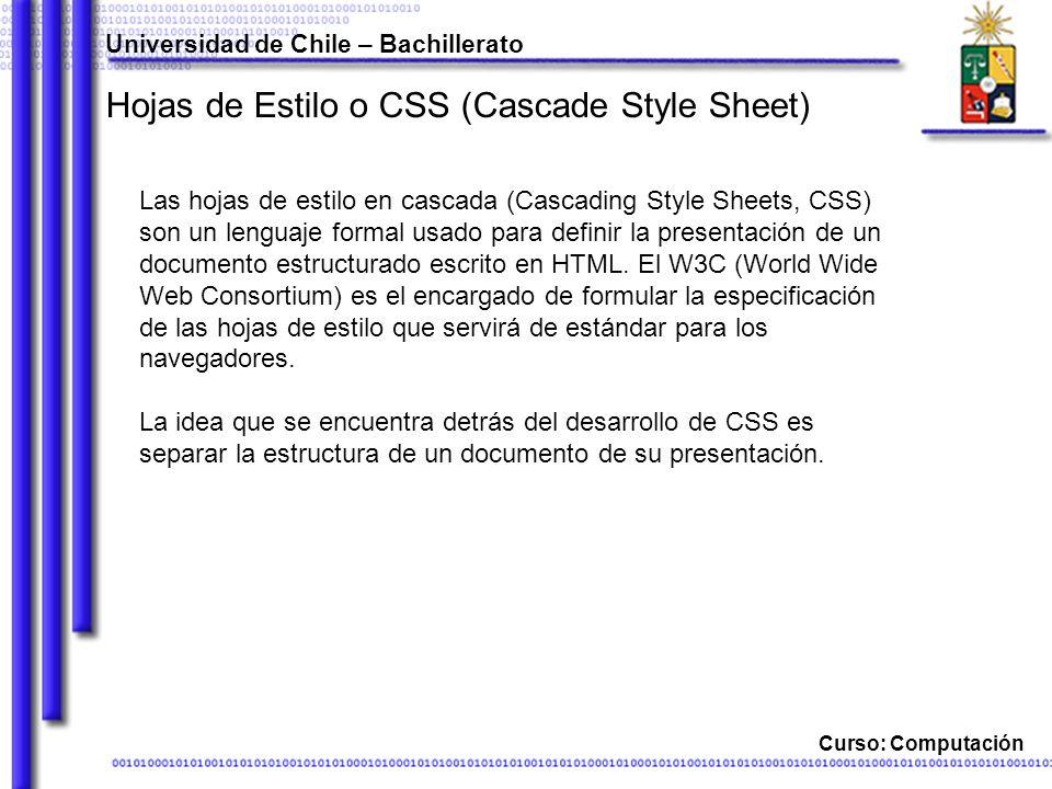 Universidad de Chile – Bachillerato Curso: Computación Propiedades de cuadro margin-.