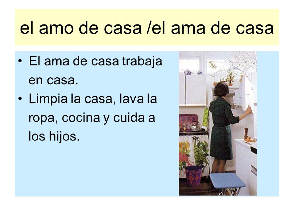 el amo de casa /el ama de casa El ama de casa trabaja en casa. Limpia la casa, lava la ropa, cocina y cuida a los hijos.