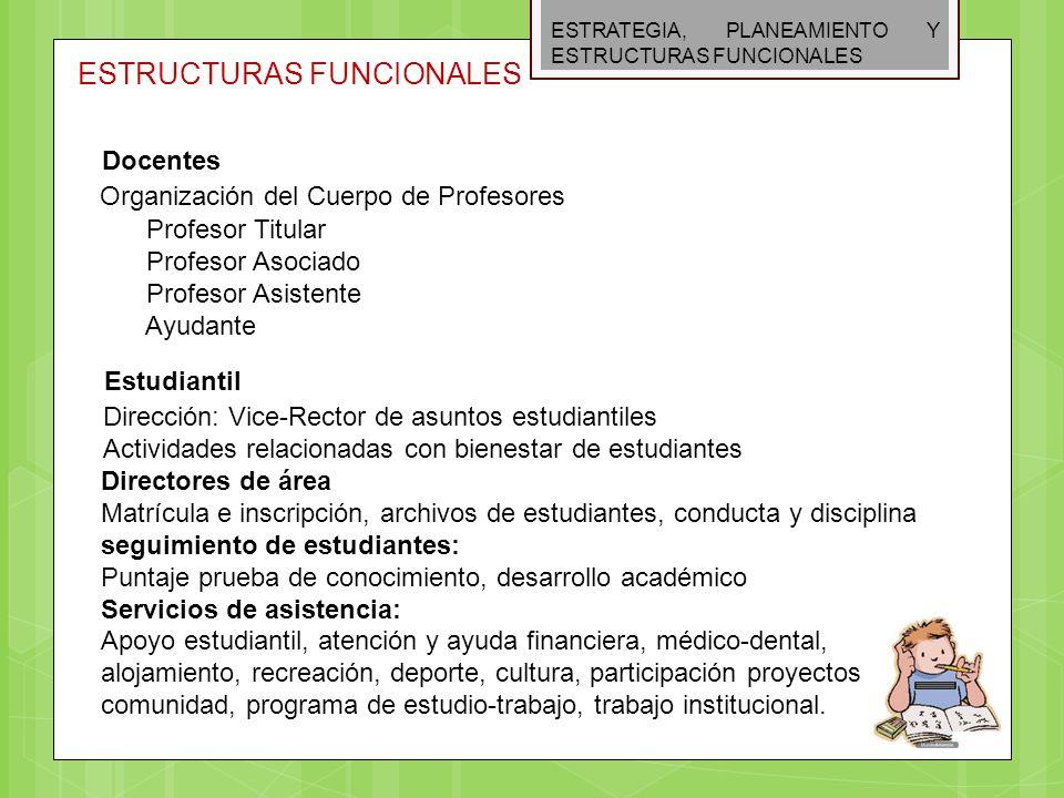 ESTRATEGIA, PLANEAMIENTO Y ESTRUCTURAS FUNCIONALES ESTRUCTURAS FUNCIONALES Docentes Organización del Cuerpo de Profesores Profesor Titular Profesor As