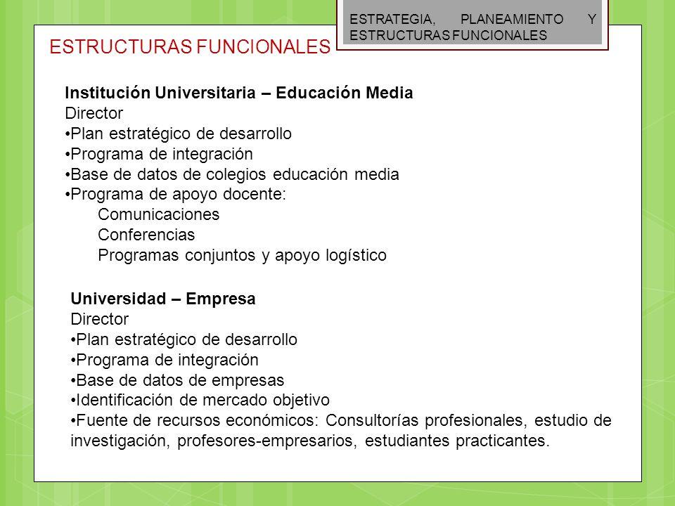 ESTRATEGIA, PLANEAMIENTO Y ESTRUCTURAS FUNCIONALES ESTRUCTURAS FUNCIONALES Institución Universitaria – Educación Media Director Plan estratégico de de