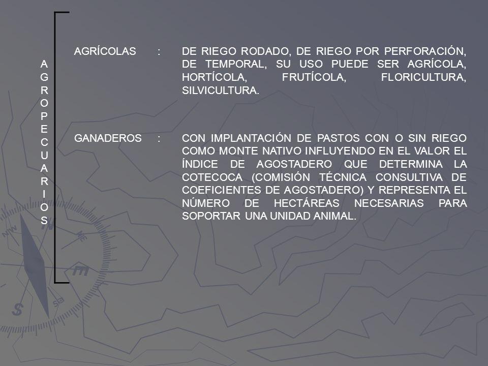 AGROPECUARIOS AGROPECUARIOS AGRÍCOLAS:DE RIEGO RODADO, DE RIEGO POR PERFORACIÓN, DE TEMPORAL, SU USO PUEDE SER AGRÍCOLA, HORTÍCOLA, FRUTÍCOLA, FLORICU