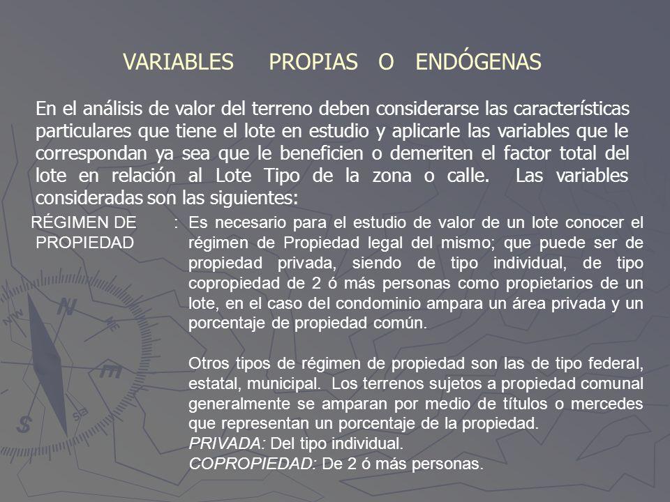 VARIABLES PROPIAS O ENDÓGENAS En el análisis de valor del terreno deben considerarse las características particulares que tiene el lote en estudio y a