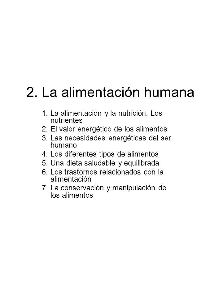 2. La alimentación humana 1.La alimentación y la nutrición. Los nutrientes 2.El valor energético de los alimentos 3.Las necesidades energéticas del se