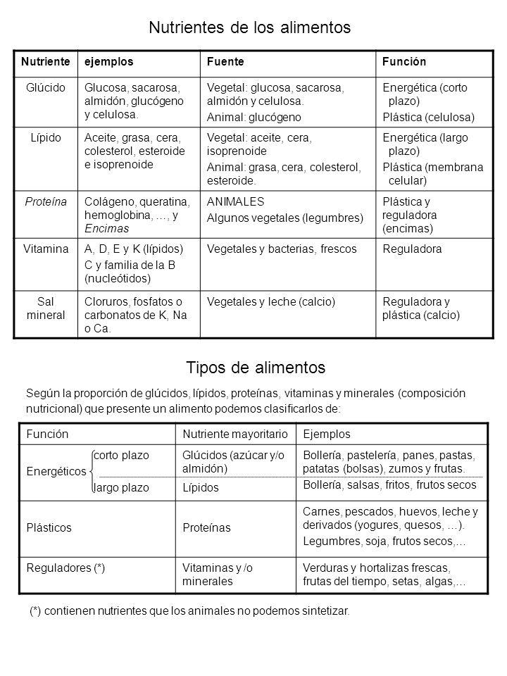 Nutrientes de los alimentos NutrienteejemplosFuenteFunción GlúcidoGlucosa, sacarosa, almidón, glucógeno y celulosa. Vegetal: glucosa, sacarosa, almidó