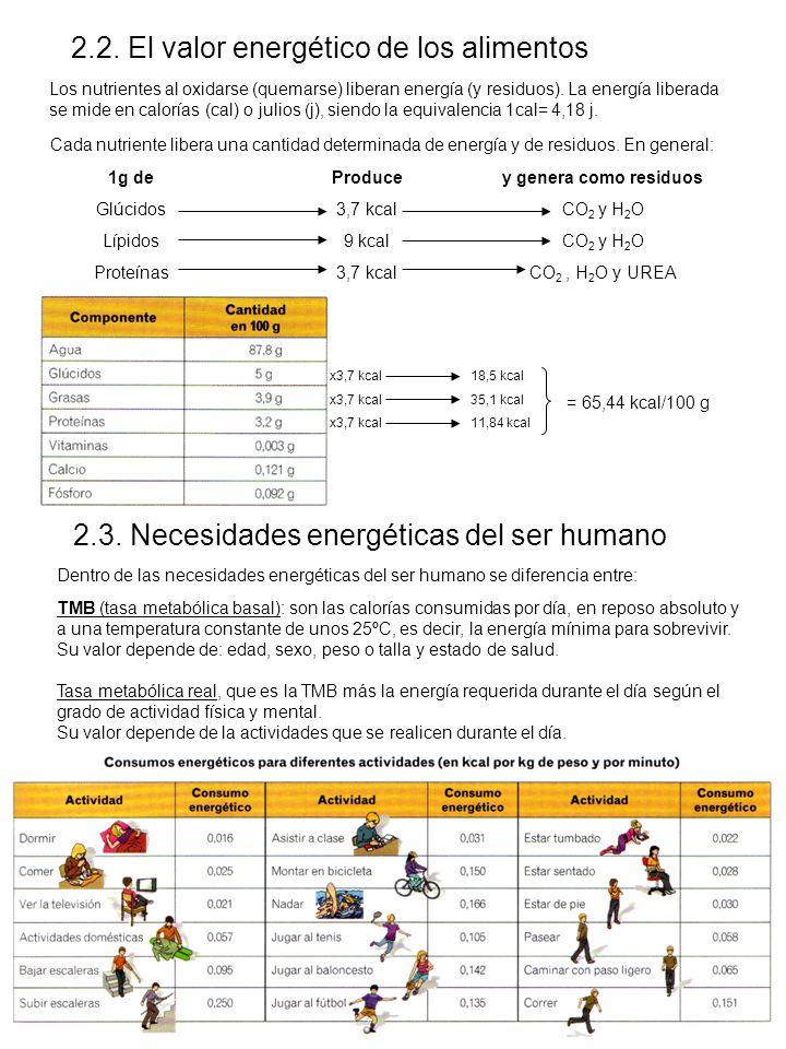 2.2. El valor energético de los alimentos Los nutrientes al oxidarse (quemarse) liberan energía (y residuos). La energía liberada se mide en calorías