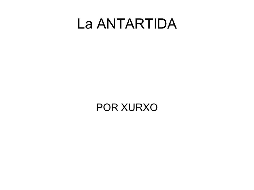 La ANTARTIDA POR XURXO