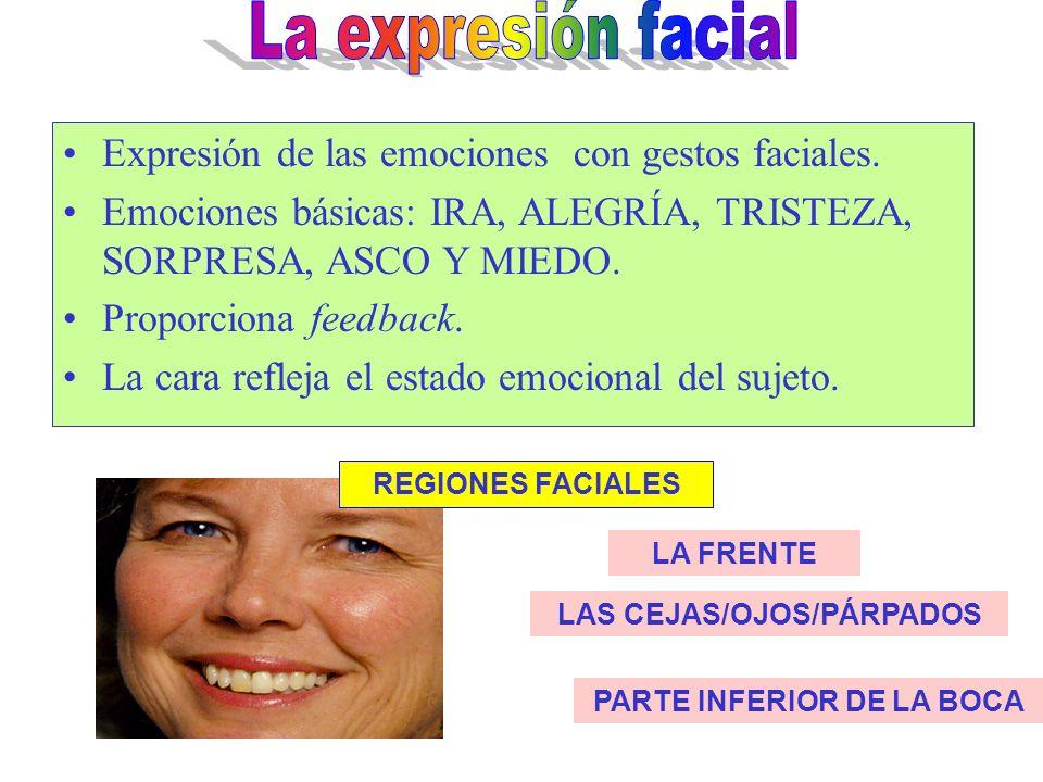 TRISTEZA Elevación y aproximación de las cejas, comisuras de los labios descendidas y elevación de la barbilla. ASCO Nariz arrugada, descenso general