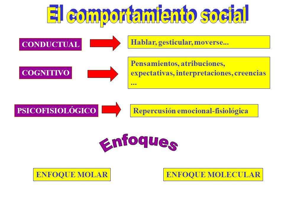 CONDUCTUAL COGNITIVO PSICOFISIOLÓGICO ENFOQUE MOLARENFOQUE MOLECULAR Pensamientos, atribuciones, expectativas, interpretaciones, creencias...