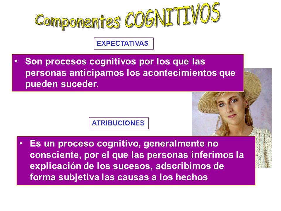 Constituyen el correlato de pensamiento de la habilidades sociales conductuales. Sus componentes son la percepción social de las situaciones, cómo las