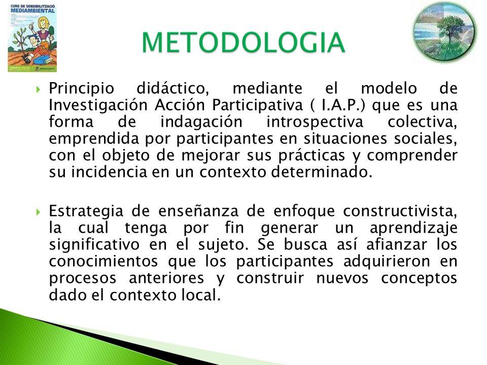 Principio didáctico, mediante el modelo de Investigación Acción Participativa ( I.A.P.) que es una forma de indagación introspectiva colectiva, empren