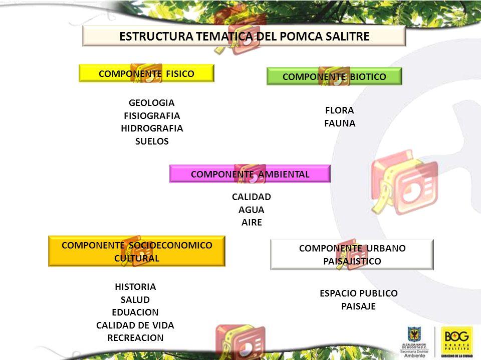 ESTRUCTURA TEMATICA DEL POMCA SALITRE COMPONENTE FISICO COMPONENTE BIOTICO GEOLOGIA FISIOGRAFIA HIDROGRAFIA SUELOS FLORA FAUNA COMPONENTE AMBIENTAL CA