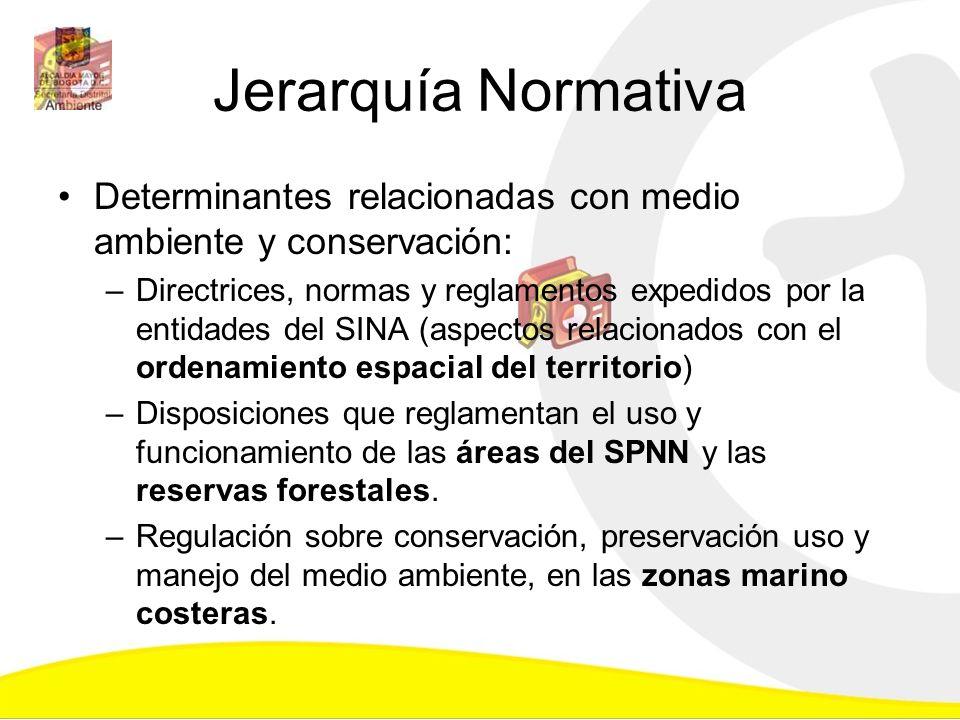 Jerarquía Normativa Determinantes relacionadas con medio ambiente y conservación: –Directrices, normas y reglamentos expedidos por la entidades del SI