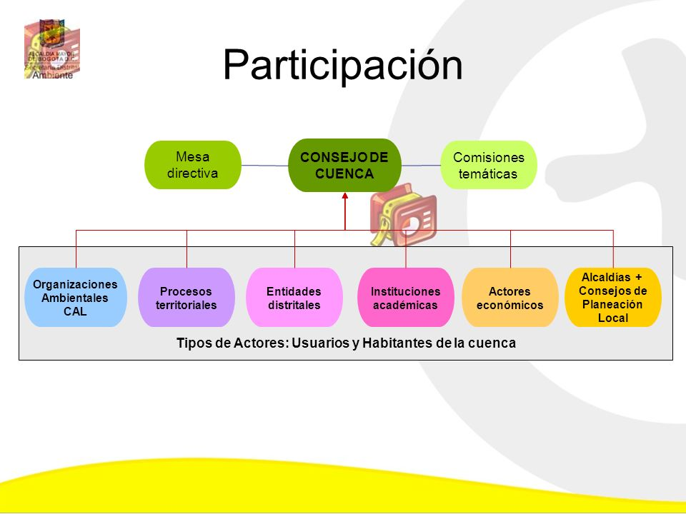 Organizaciones Ambientales CAL Procesos territoriales Entidades distritales Instituciones académicas CONSEJO DE CUENCA Actores económicos Tipos de Act