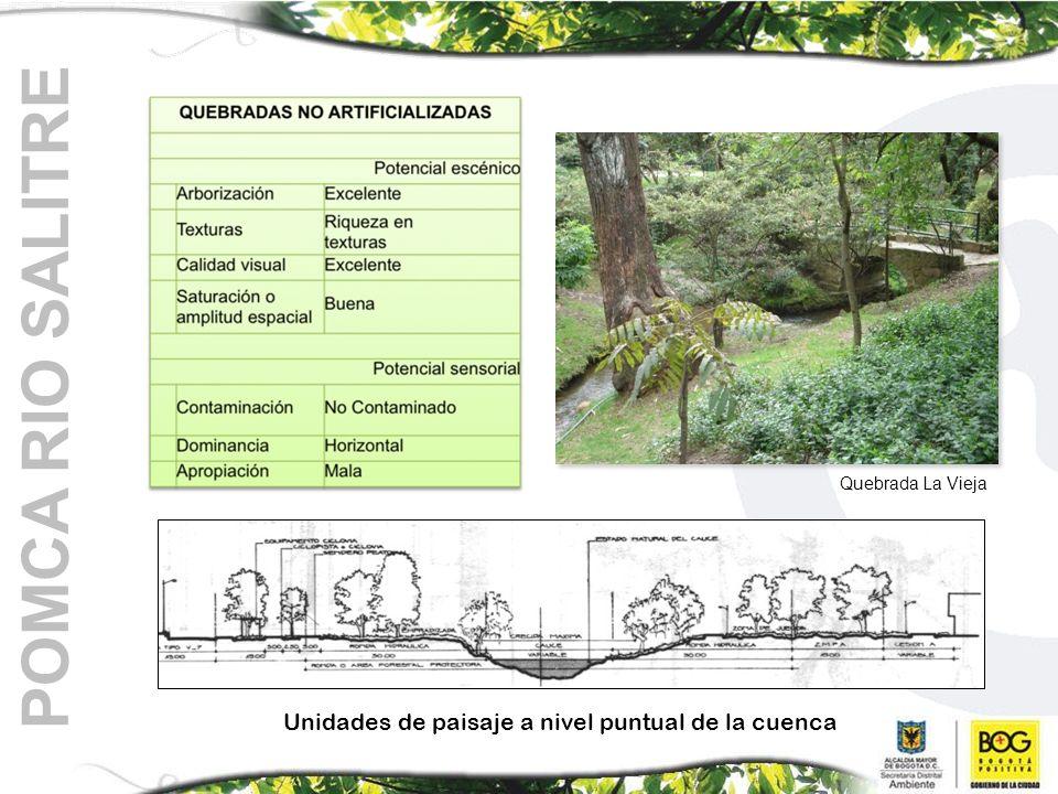 Quebrada La Vieja Unidades de paisaje a nivel puntual de la cuenca
