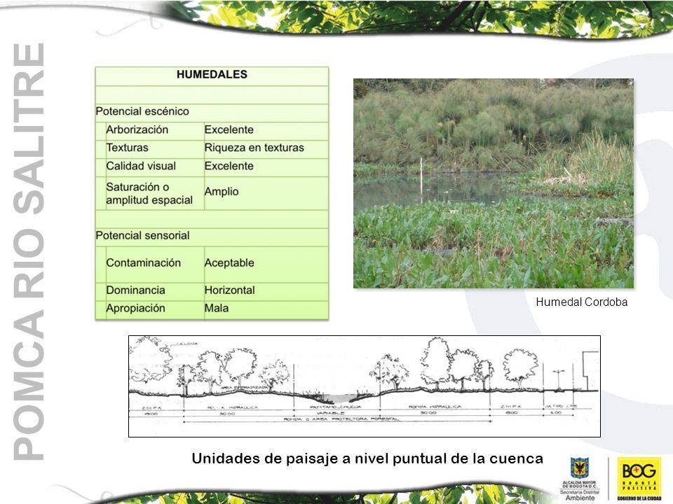 POMCA RIO SALITRE Unidades de paisaje a nivel puntual de la cuenca Humedal Cordoba