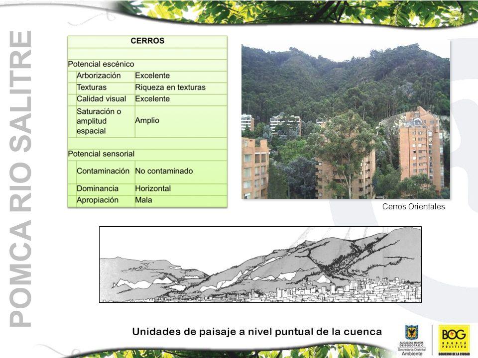 POMCA RIO SALITRE Unidades de paisaje a nivel puntual de la cuenca Cerros Orientales