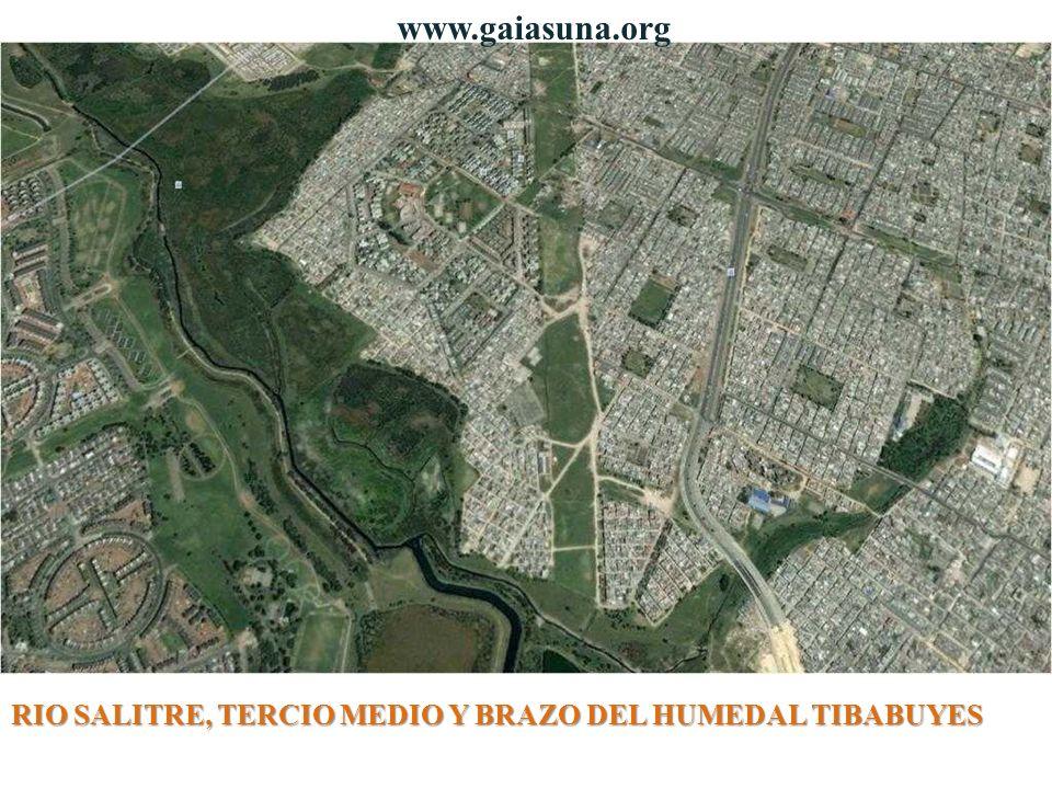 RIO SALITRE, TERCIO MEDIO Y BRAZO DEL HUMEDAL TIBABUYES www.gaiasuna.org