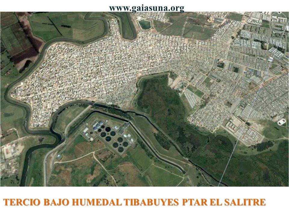 TERCIO BAJO HUMEDAL TIBABUYES PTAR EL SALITRE www.gaiasuna.org