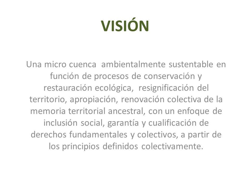 VISIÓN Una micro cuenca ambientalmente sustentable en función de procesos de conservación y restauración ecológica, resignificación del territorio, ap