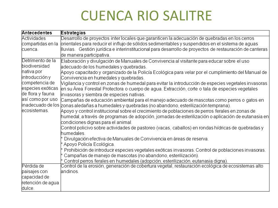 CUENCA RIO SALITRE AntecedentesEstrategias Actividades compartidas en la cuenca. Desarrollo de proyectos inter locales que garanticen la adecuación de