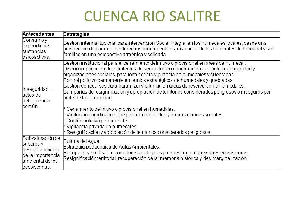 CUENCA RIO SALITRE AntecedentesEstrategias Consumo y expendio de sustancias psicoactivas. Gestión interinstitucional para Intervención Social Integral