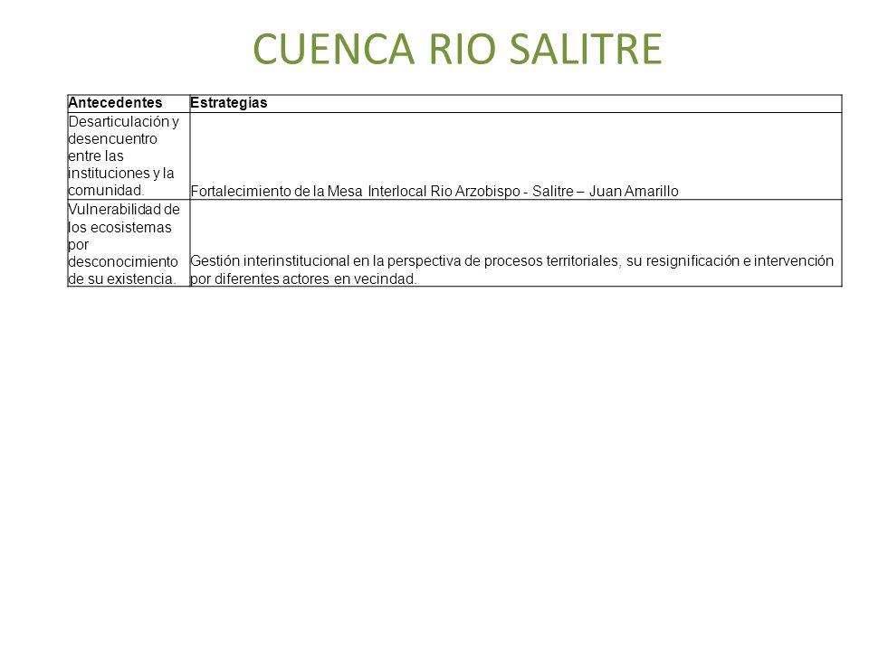 CUENCA RIO SALITRE AntecedentesEstrategias Desarticulación y desencuentro entre las instituciones y la comunidad. Fortalecimiento de la Mesa Interloca
