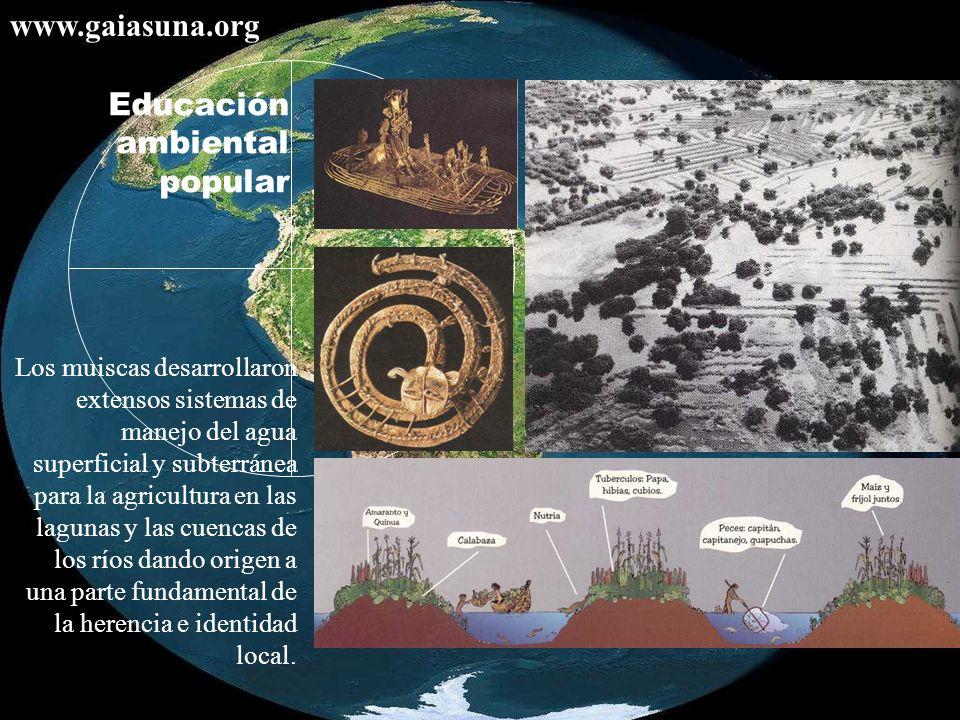 Los muiscas desarrollaron extensos sistemas de manejo del agua superficial y subterránea para la agricultura en las lagunas y las cuencas de los ríos