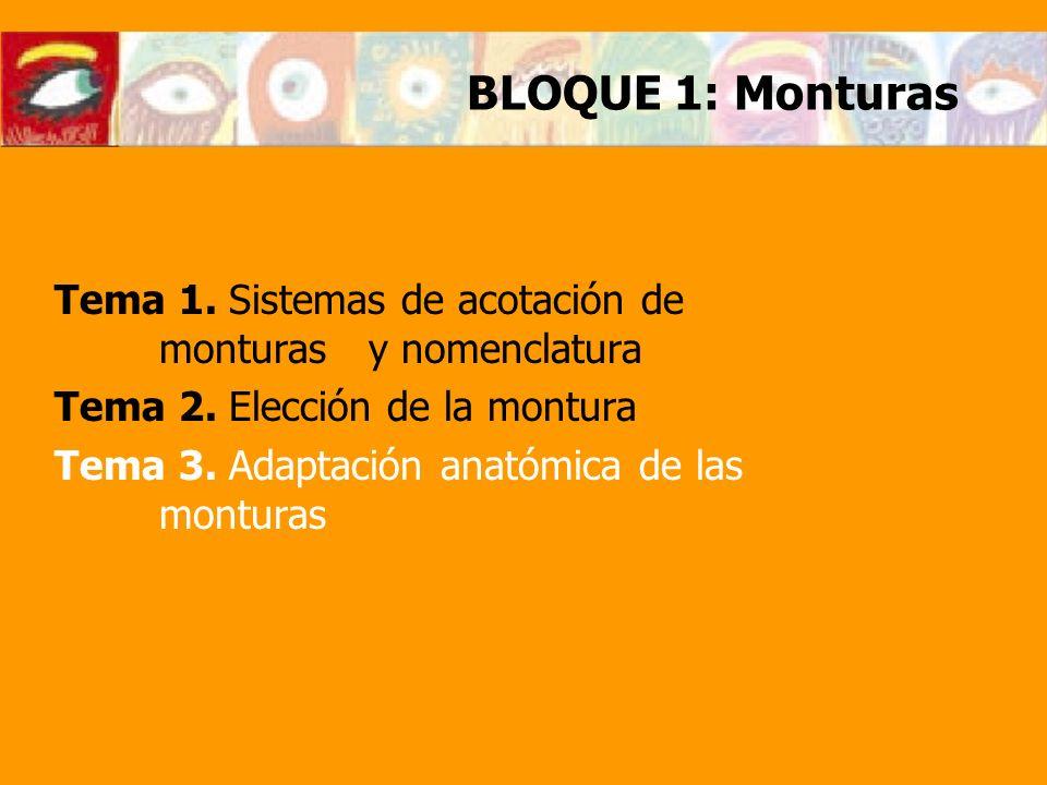 BLOQUE 1: Monturas Tema 1. Sistemas de acotación de monturas y nomenclatura Tema 2. Elección de la montura Tema 3. Adaptación anatómica de las montura
