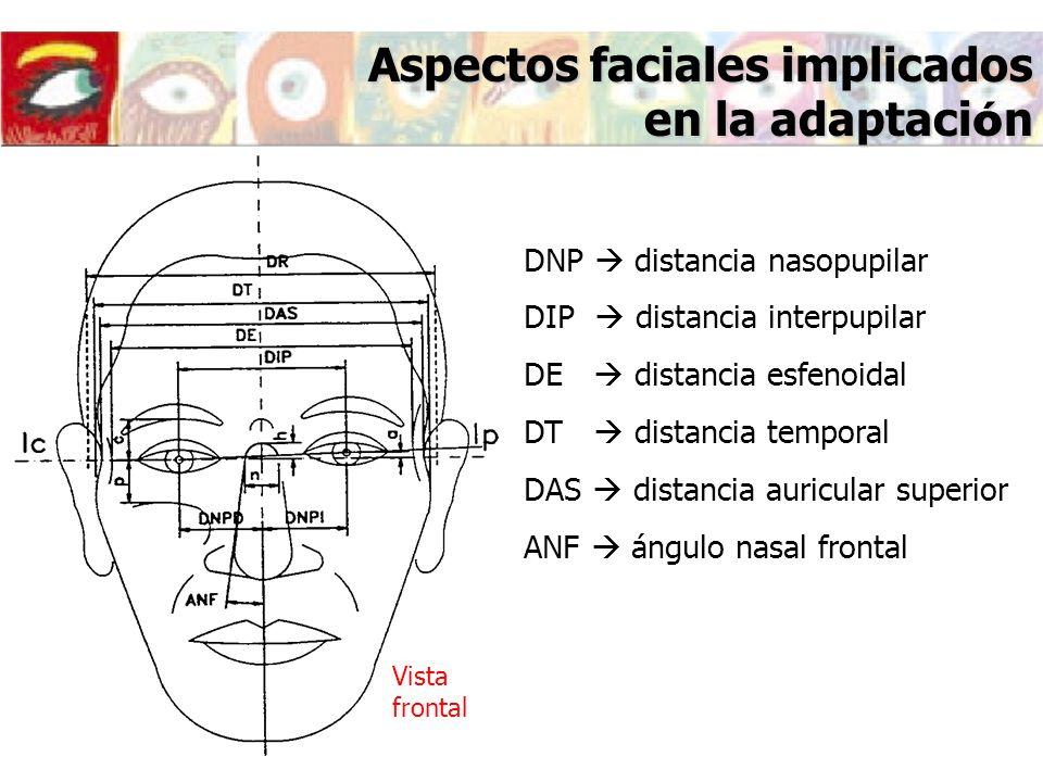 Aspectos faciales implicados en la adaptaci ó n Esfenoide Temporal Auricular Longitud lateral Ángulo pantoscópico ( ) Vista lateral Plano de la montura Línea de visión