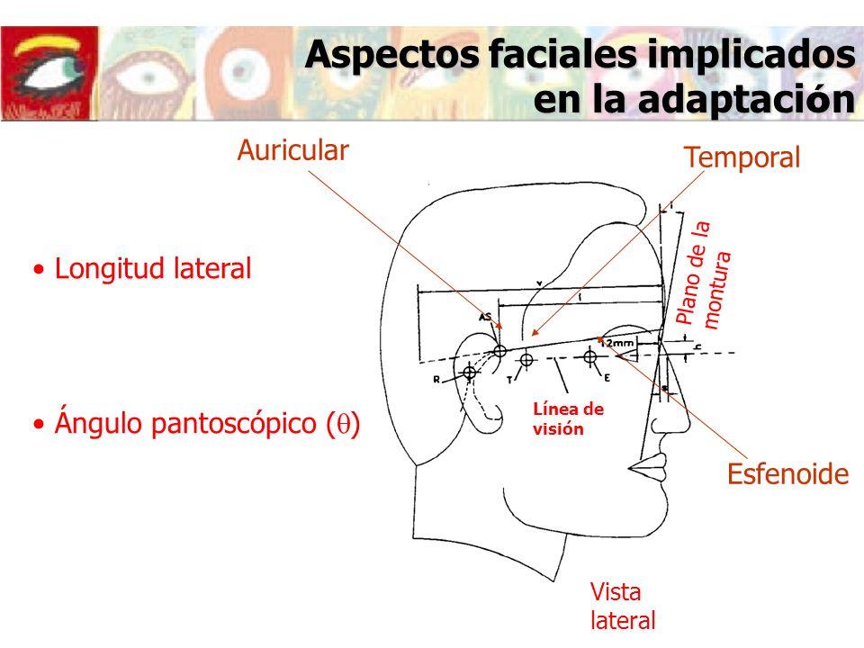 Aspectos faciales implicados en la adaptaci ó n Esfenoide Temporal Auricular Longitud lateral Ángulo pantoscópico ( ) Vista lateral Plano de la montur