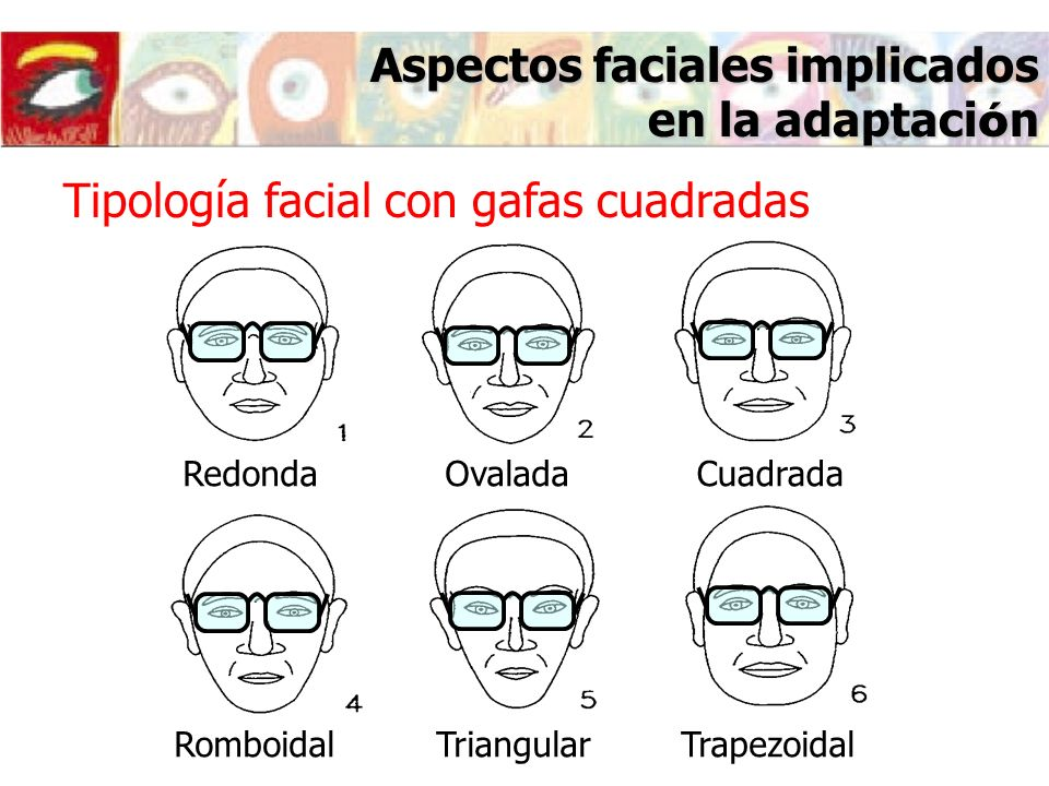 Aspectos faciales implicados en la adaptaci ó n Tipología facial con gafas cuadradas RedondaOvaladaCuadrada RomboidalTriangularTrapezoidal