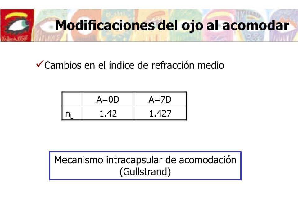Modificaciones del ojo al acomodar Cambios en el índice de refracción medio A=0DA=7D nLnL 1.421.427 Mecanismo intracapsular de acomodación (Gullstrand)