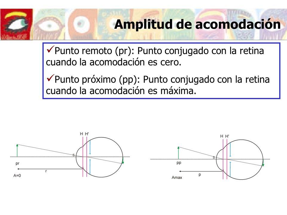 Modificaciones del ojo al acomodar Cambios geométricos en el cristalino A=0DA=7D eLeL 4 mm4.5 mm r 1L 10.2 mm6 mm r 2L -6 mm-5.5 mm