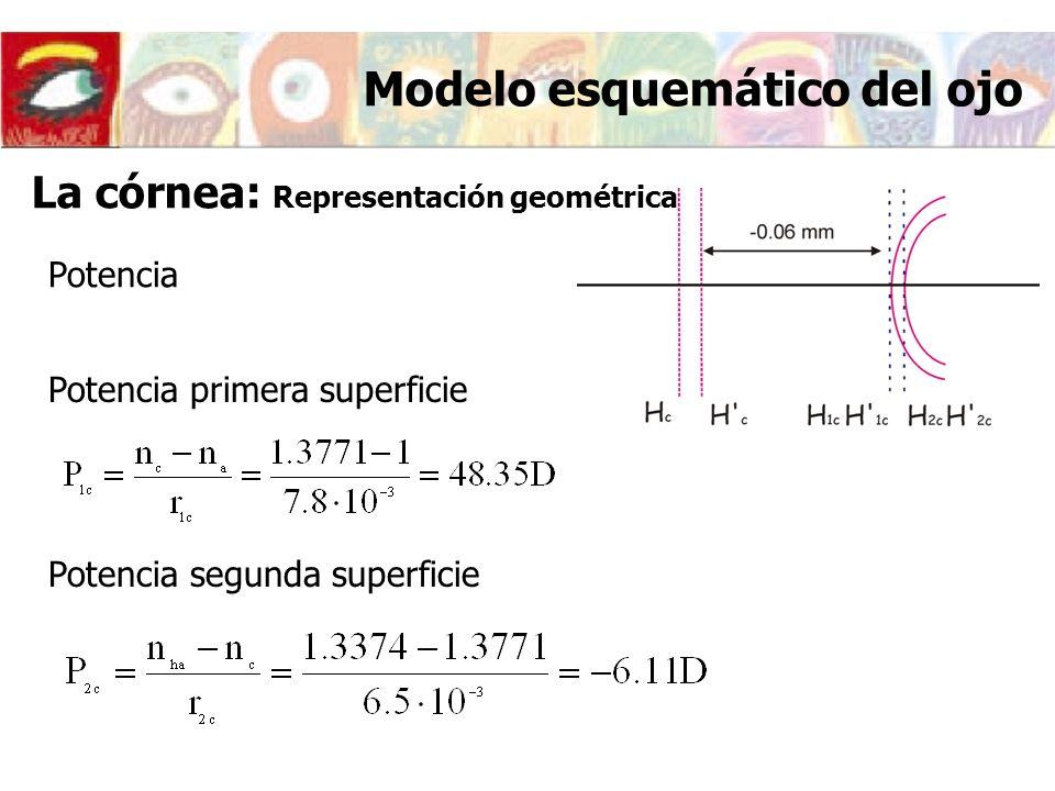 Potencia Potencia primera superficie Potencia segunda superficie Modelo esquemático del ojo La córnea: Representación geométrica