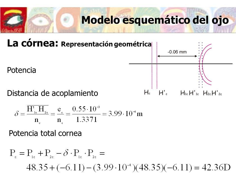 Potencia Distancia de acoplamiento Potencia total cornea Modelo esquemático del ojo La córnea: Representación geométrica