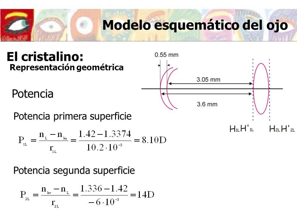 Modelo esquemático del ojo Potencia Potencia primera superficie Potencia segunda superficie El cristalino: Representación geométrica