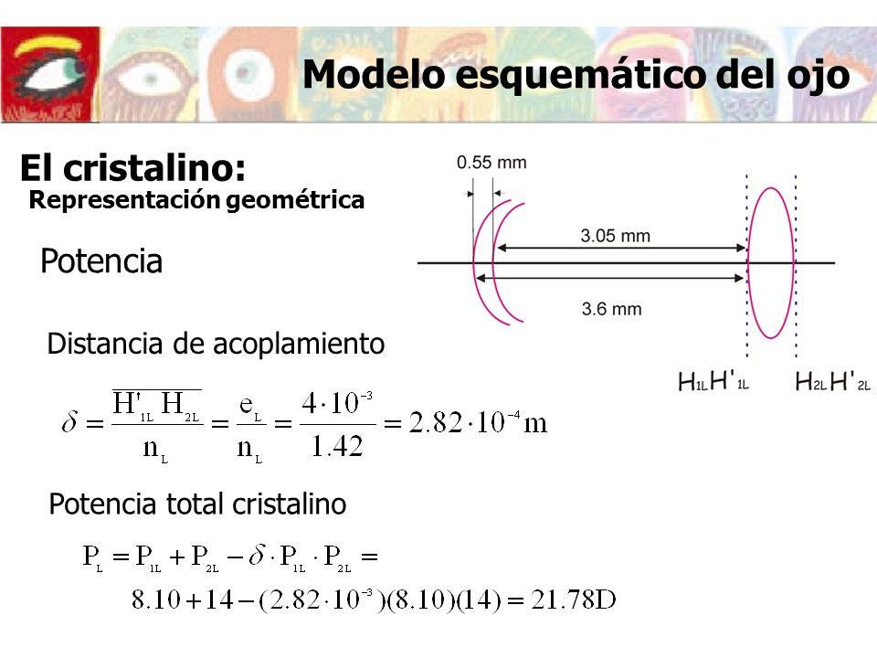 Modelo esquemático del ojo Potencia Distancia de acoplamiento Potencia total cristalino El cristalino: Representación geométrica