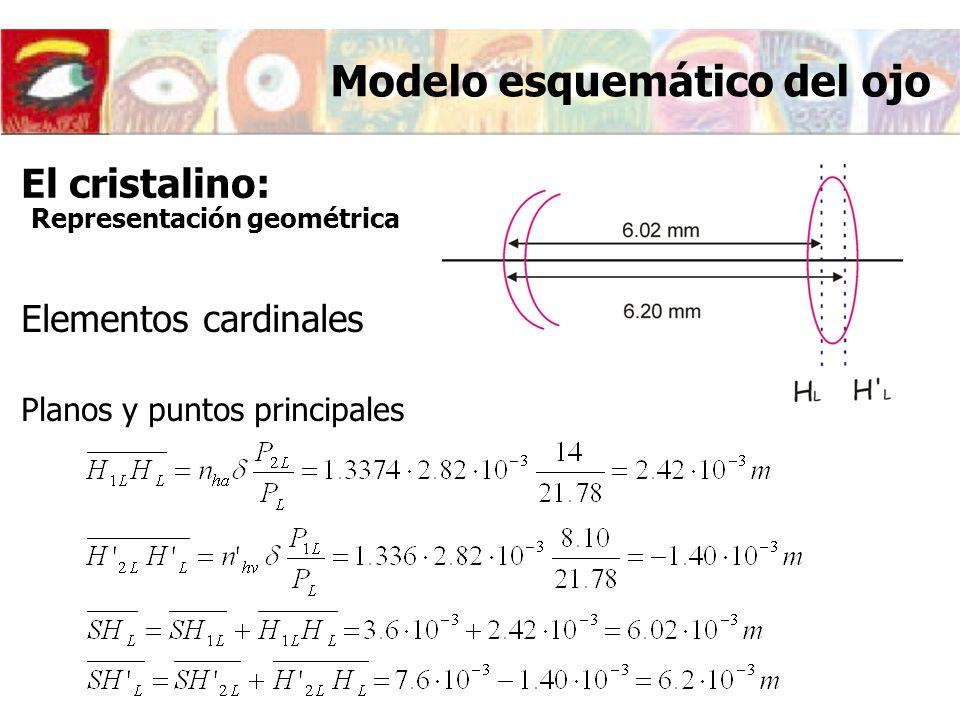 Elementos cardinales Planos y puntos principales Modelo esquemático del ojo El cristalino: Representación geométrica
