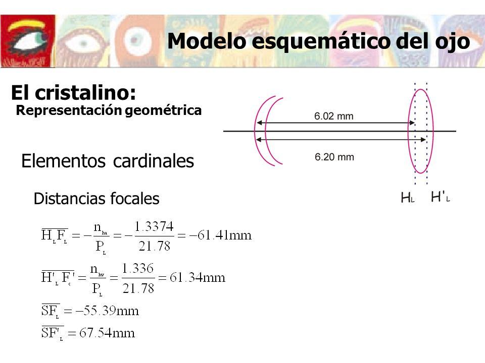 Elementos cardinales Distancias focales Modelo esquemático del ojo El cristalino: Representación geométrica