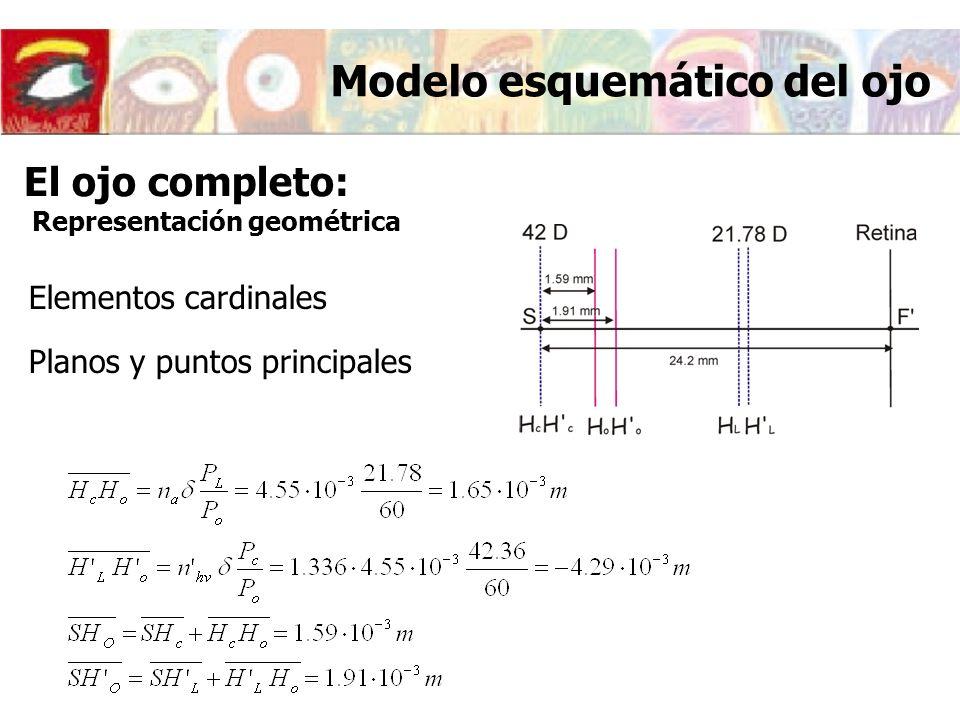Elementos cardinales Planos y puntos principales Modelo esquemático del ojo El ojo completo: Representación geométrica