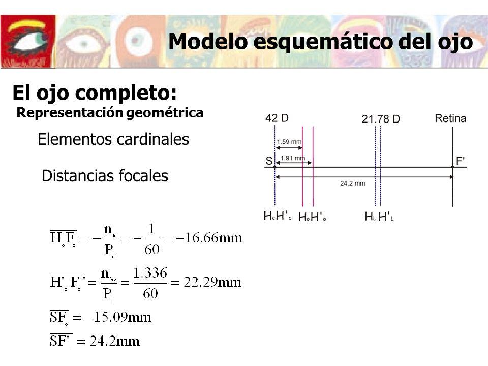 Elementos cardinales Distancias focales Modelo esquemático del ojo El ojo completo: Representación geométrica