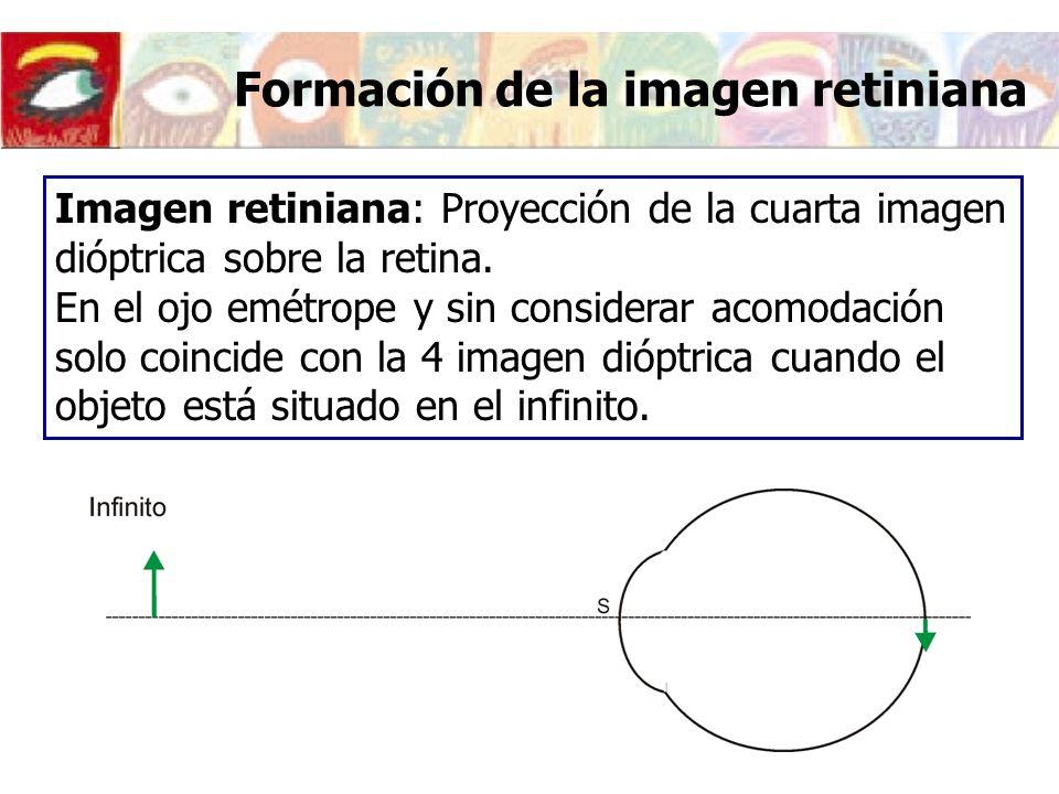 Formación de la imagen retiniana Imagen retiniana: Proyección de la cuarta imagen dióptrica sobre la retina. En el ojo emétrope y sin considerar acomo