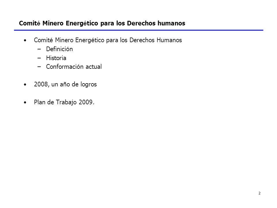 3 Comit é Minero Energ é tico - Definici ó n Misi ó n: promoci ó n de un mejor desempeño en materia de derechos humanos en lo que concierten a la seguridad, tanto entre las empresas del sector minero energ é tico como entre entidades del Estado.