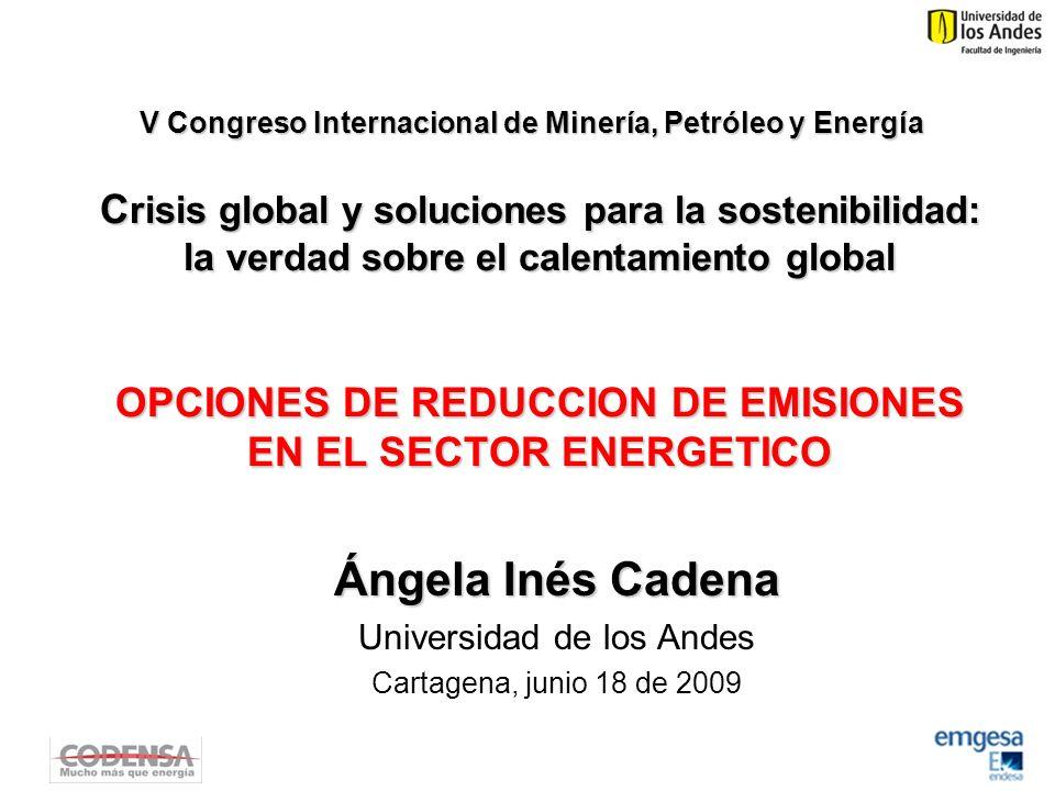 C risis global y soluciones para la sostenibilidad: la verdad sobre el calentamiento global OPCIONES DE REDUCCION DE EMISIONES EN EL SECTOR ENERGETICO Ángela Inés Cadena Universidad de los Andes Cartagena, junio 18 de 2009 V Congreso Internacional de Minería, Petróleo y Energía
