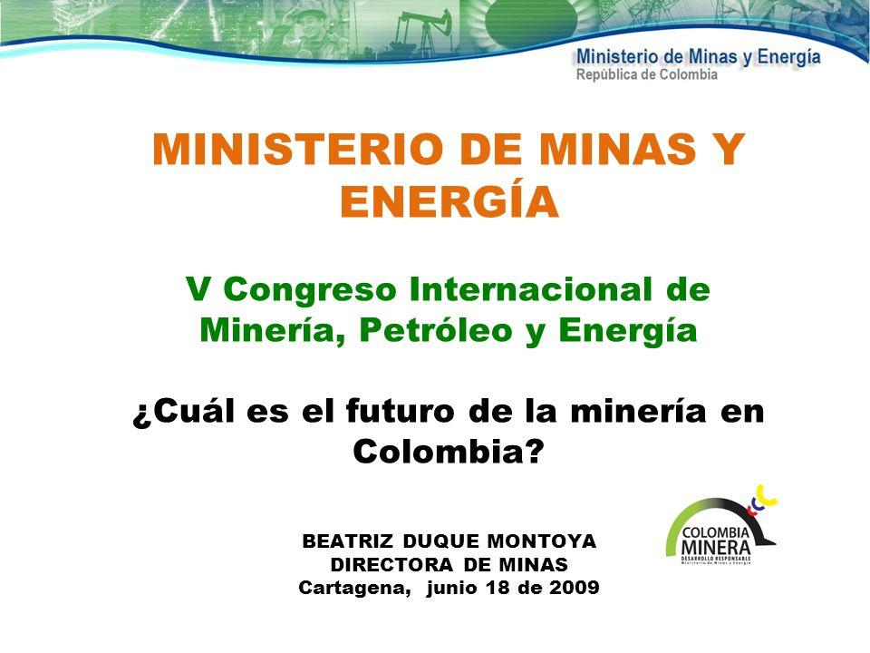 MINISTERIO DE MINAS Y ENERGÍA V Congreso Internacional de Minería, Petróleo y Energía ¿Cuál es el futuro de la minería en Colombia? BEATRIZ DUQUE MONT