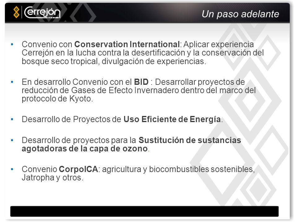 Nuestra gestión social Cerrejón contribuye al mejoramiento de las condiciones de vida de la comunidad guajira